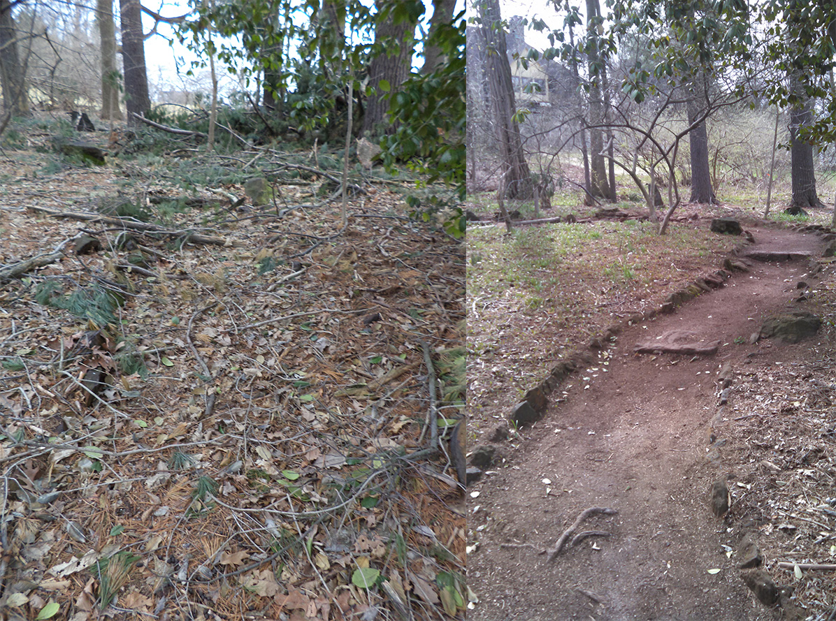 Arbor Trail Renovation: Before, After and Beyond