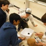 4-H Robo Expo Co-sponsored with School of Engineering