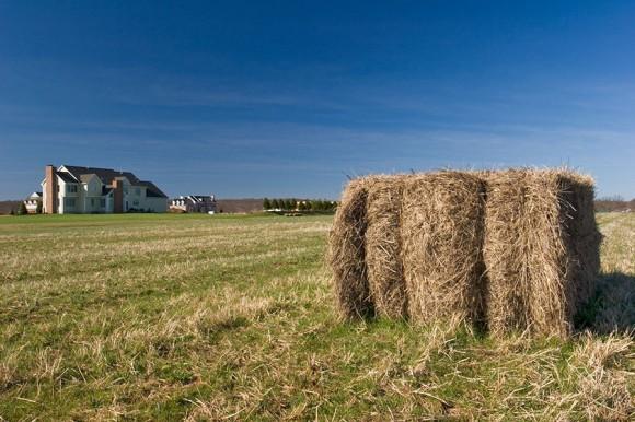 Urban Fringe Farming