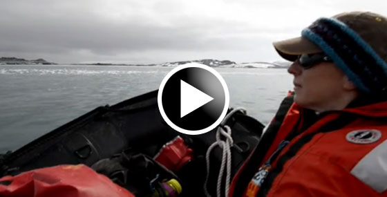 Video: Beyond The Ice