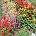 RCE Organic Vegetable Gardening Workshop on April 6