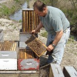 Middlesex County Master Gardener Workshop: Basics of Bee-Keeping