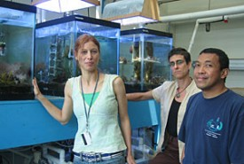 researchers in front of coral tanks