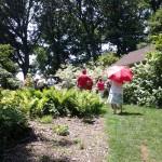 SEBS Staff Venture into the Garden