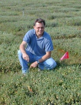 Nick Vorsa in cranberry research bog.