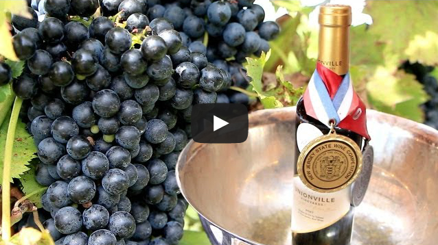 Watch the New Jersey wine industry get a Rutgers education.