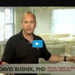Raising Disease-Resistant Oysters at Rutgers Haskin Shellfish Lab