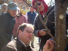 Paul Cowie demonstrates proper pruning protocol during the Master Gardener training.