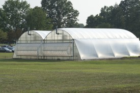 The AIDPG system can be applied to any size greenhouse.
