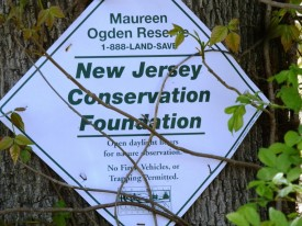 Maureen Ogden Reserve, located in East Hanover, Morris County.  Photo courtesy of Pat Rector.
