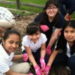 New Brunswick Girl Scout Troop Adopts Children's Garden at Local Farmer's Market