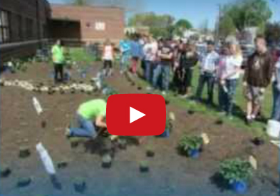 Video: Hamilton High School West Rain Garden Installation