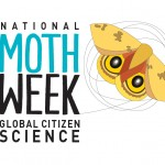 National Moth Week Celebrated in New Jersey