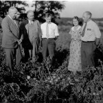 What's in Season from the Garden State: Legendary Jersey Tomatoes and the Role NJ Farmers Played in Selecting Winners