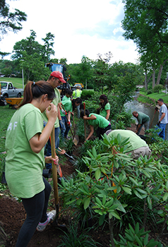 A team of Rutgers students installing new plants at Maplewood's Memorial Park. Photo: Courtesy of Maplewood Matters