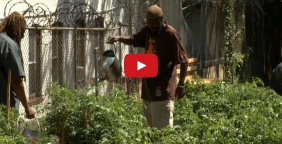 Video: NJTV News: Helping Struggling Veterans