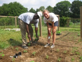 Albert Ayeni and former intern Alex Nawrot plant a hot pepper plot at Rutgers Gardens.