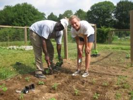 Albert Ayeni and former intern Alex Nawrot plant a hot pepper plot at Rutgers Gardens.