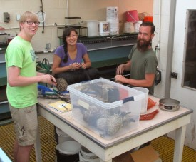 L-R: William Shroer, Lauren Huey and Joseph Looney at the Haskin Shellfish Research Laboratory.