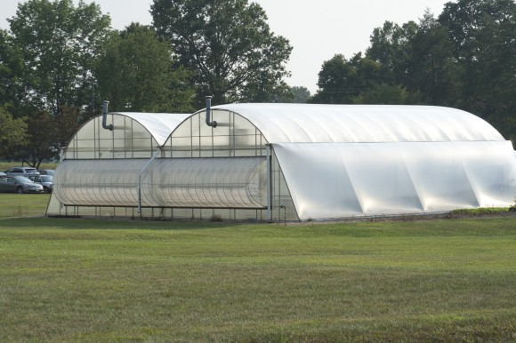 The air inflated plastic greenhouse increases food security in third world countries where it is used extensively to extend their growing seasons. Locally, the flowers we buy in full bloom, the flats of vegetable and herb transplants for springtime planting and local vegetables grown in plastic covered greenhouses to extend the early or late seasons, can be produced locally and economically.