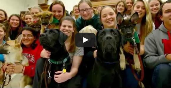 Video: 2014-15 LiveBIG: Rutgers Seeing Eye Puppy Raising Club