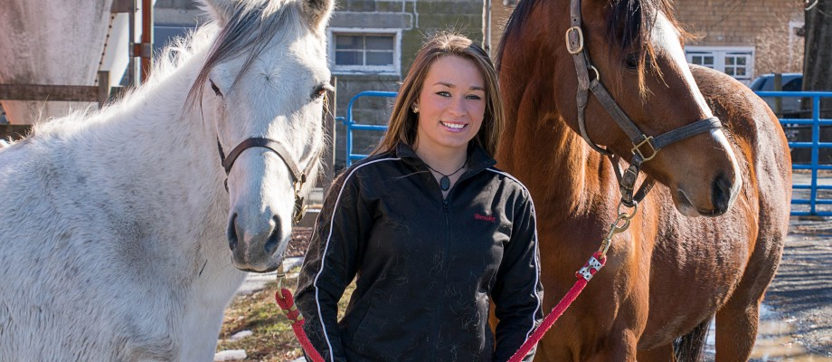 Rutgers Launches New Fostering Program for Rescue Horses