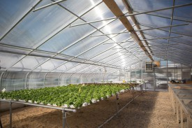 The veterans helped set up equipment in a newly-constructed greenhouse in Newark that will be used to grow fish and vegetables.