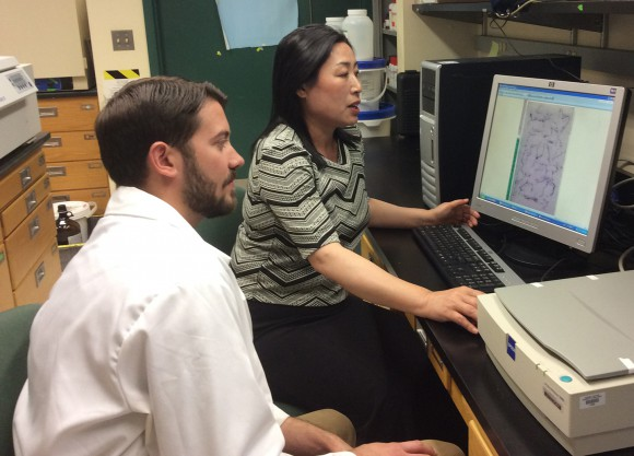 David Jespersen and Bingru Huang reviewing images of roots to explore how changes in CO² concentration affects below-ground growth. Photo: Paula Walcott-Quintin.