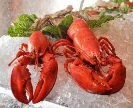 The mix of Jersey Seafood CSF offerings includes lobster.