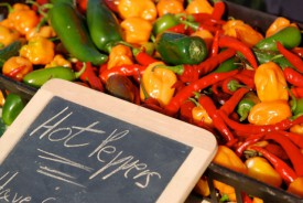 Pain-worthy peppers add color and flavor to fresh salsa.