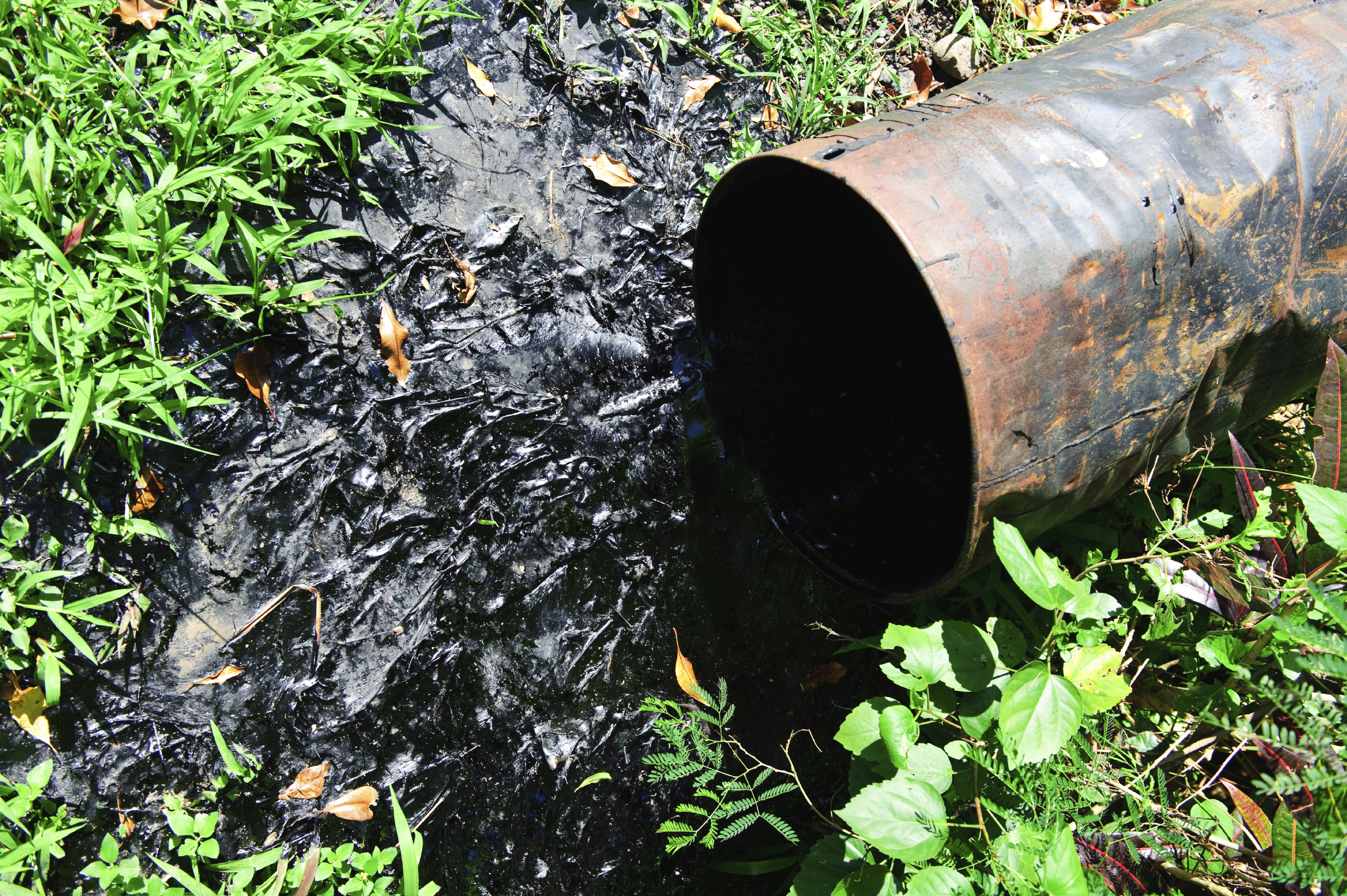 environmental ethics issue on oil spills Environmental ethics one important issue in environmental ethics, brought to the fore of our social consciousness by the bp oil spill, is the question of responsibility in response to disasters this question can be asked in a different ways.