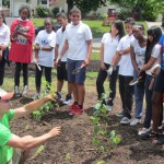 Rutgers Water Resources Program and Roselle Public Works Install Rain Garden at Local School