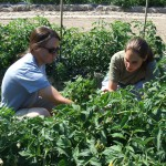 Rutgers Cooperative Extension Garners $460,170 USDA Grant to Assist NJ Beginning Farmers