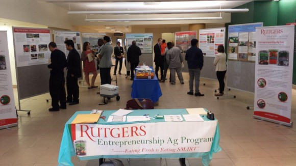 The Entrepreneurship Agriculture intern's posters on display.
