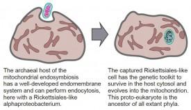 Debashish Science paper - image