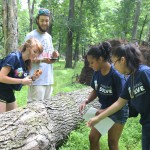 Rutgers Ecological Preserve: A Living Outdoor Classroom