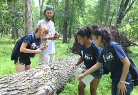 Rutgers Summer Science Program scholars in the Rutgers Ecological Preserve in summer 2014.