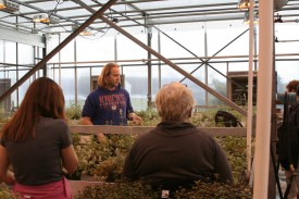 Doctoral student William Reichert discusses the breeding he and Simon are doing to develop superior catnip varieties.