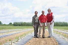 NJAES faculty working on tomato variety research (left to right): Jack Rabin, Peter Nitzsche, and Tom Orton. Photo courtesy of New Jersey Monthly.