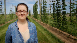 Rutgers doctoral candidate in plant biology, Megan Muehlbauer, co-directs the Rutger's hops study and oversees the trial hops plot at Snyder Research Farm in Pittstown. Photo: Cameron Bowman