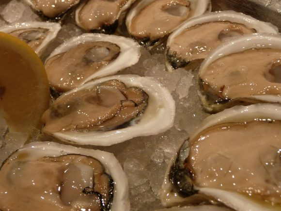 Farm raised oysters.