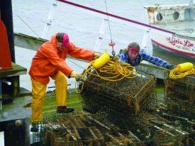 Shellfish fishermen.