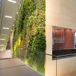 Growing Up! RCE of Ocean County Implements Vertical Gardens Program