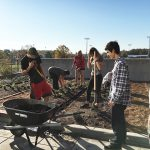Campus Living Lab Evolves with Installation of Kitchen Garden and Shade Trees at IFNH