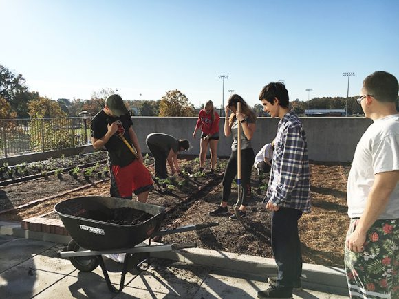 campus living lab evolves with installation of kitchen garden and