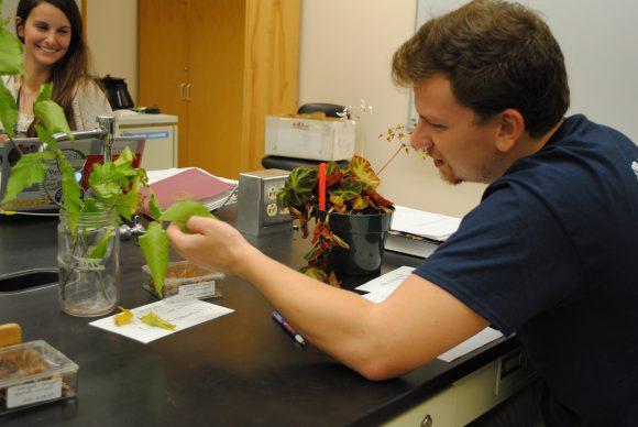 The Official Botanic Garden Of Rutgers: Professor Lena Struwe Launches Botany Depot
