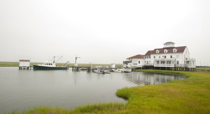 """SEBS Scientists to Help Create """"Songscape"""" for Mullica River-Great Bay Estuary"""
