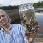 Rutgers-led Studies Find Microplastics Pollution in Freshwater Environments Like the Raritan and Passaic Rivers