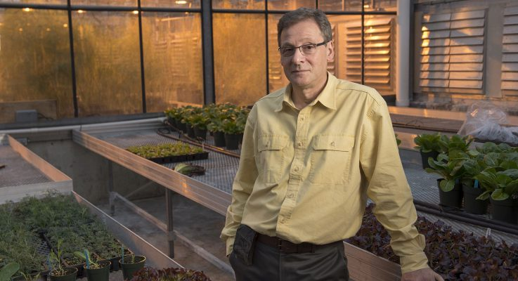 Prof. Ilya Raskin and Collaborators Awarded Global Health Grant to Help Seed Expanded Research in Indonesia