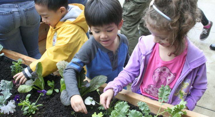 Byrne Seminar Students Build Schoolyard Teaching Garden for IFNH Nursery School